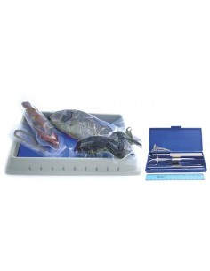 Biology Dissection Kit (with specimens)