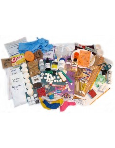 Deluxe Lab Kit for Human Anatomy