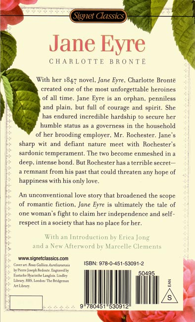 overview jane eyre by charlott bront essay The gothic features of jane eyre by charlotte bronte a gothic novel is a type of  literature, which became very popular in the late eighteenth and early.