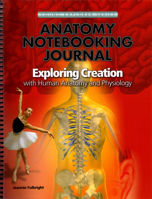 Notebooking Journal - Anatomy